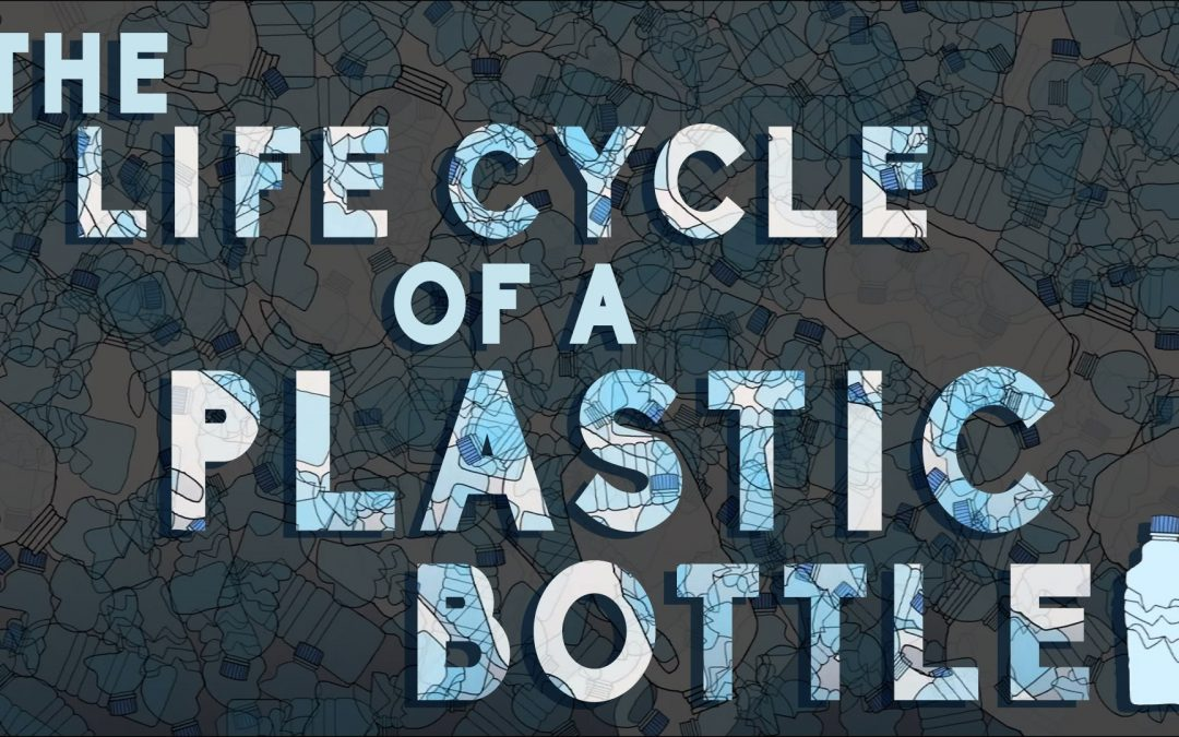 WHAT REALLY HAPPENS TO THE PLASTIC YOU THROW AWAY