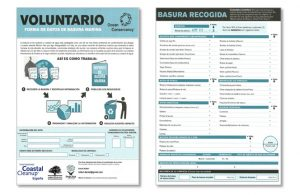 Data Cards