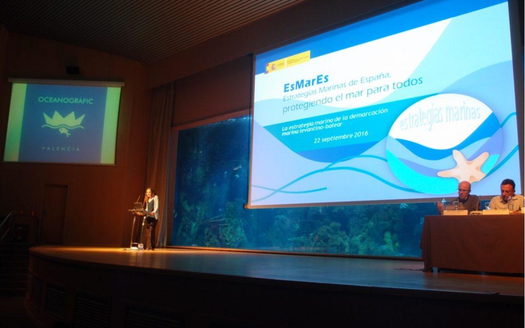 La ASOCIACIÓN AMBIENTE EUROPEO asistió al taller divulgativo de la Estrategia marina de la demarcación Levantino-Balear que se celebró en el Oceanogràfic de Valencia.